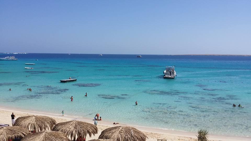 Schnorcheln im Ras Mohammed | Bustour Ras Mohammed, Sharm el Sheikh