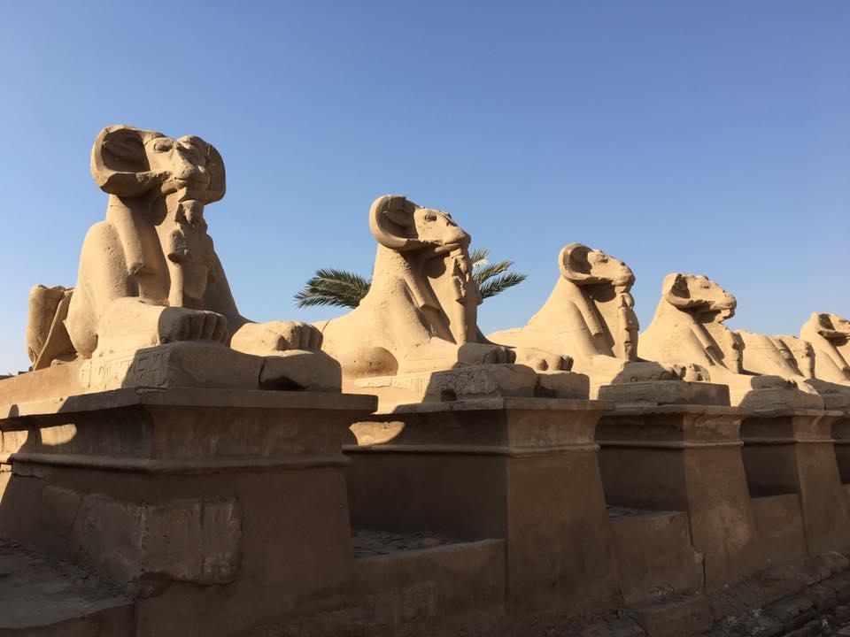 Tagesausflug von Somay bay nach Luxor mit dem Bus