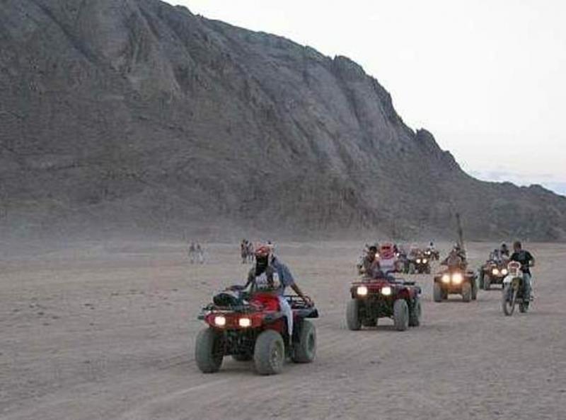 Quad, Kamelreiten und Beduinendorf ab Safaga Hafen